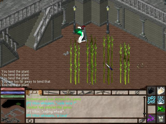 farming.JPG, 65 kb, 640 x 480